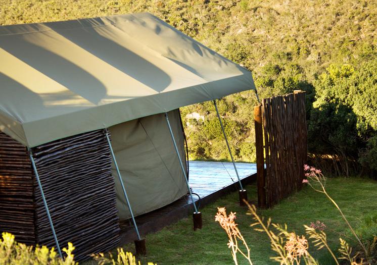 Accommodation - Glamping - Hopewell